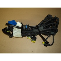 [184955] CONNECTION CABLES FOR L.H. ENGINE COMPARTMENT (Used)